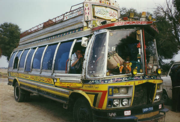 De kat en de adelaar - bus