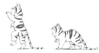 Daar komt de tijger - tijgertje illustratie1