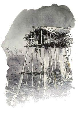 Het spoor van de panter - boomhut