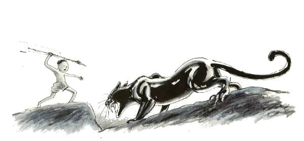 Het spoor van de panter - djit panter