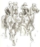 het_paardenboek_politie_tek